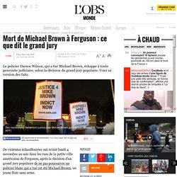 Mort de Michael Brown à Ferguson : ce que dit le grand jury- 25 novembre 2014