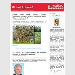 Michel Abhervé