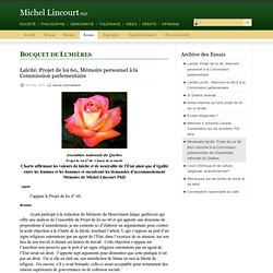 Michel Lincourt » Essais