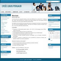Lycée Louis Pergaud