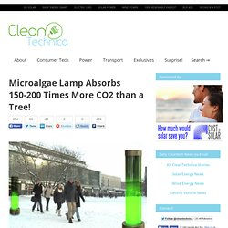 Microalgae Lamp Absorbs 150-200 Times More CO2 than a Tree!