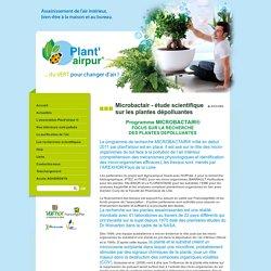 Microbactair - étude scientifique sur les plantes dépolluantes