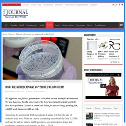 What are microbeads and why should we ban them? - Canada Journal