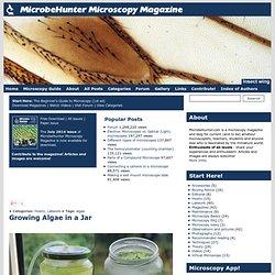 MicrobeHunter Microscopy Magazine