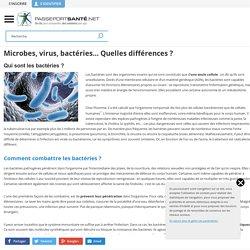 Microbes, virus, bactéries... Quelles différences ?