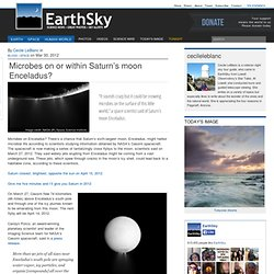 Microbes on or within Saturn's moon Enceladus?