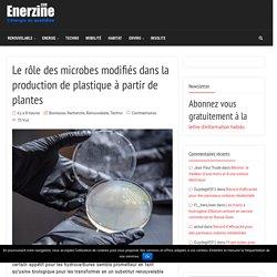 Le rôle des microbes modifiés dans la production de plastique à partir de plantes – Enerzine