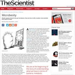 Microbesity