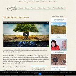 Microbiologie des sols vivants