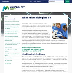 Careers - What microbiologists do