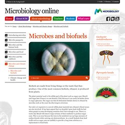 About Microbiology - Microbes and climate change - Microbes and biofuels
