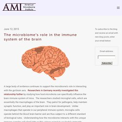 The microbiome's role in the immune system of the brain — The American Microbiome Institute