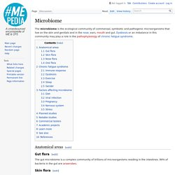 Microbiome - MEpedia - An encyclopedia of ME and CFS