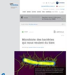 Microbiote: des bactéries qui nous veulent du bien
