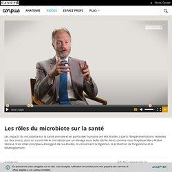 Les rôles du microbiote sur la santé - Corpus - réseau Canopé