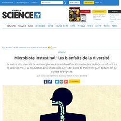 Microbiote instestinal : les bienfaits de la diversité