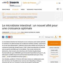 Le microbiote intestinal : un nouvel allié pour une croissance optimale