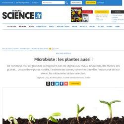 Microbiote : les plantes aussi !