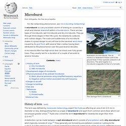 Microburst
