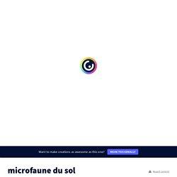 microfaune du sol by dgachet on Genially