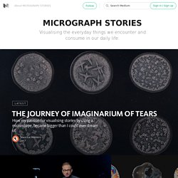 MICROGRAPH STORIES