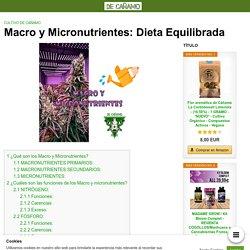 Macro y Micronutrientes: Dieta Equilibrada