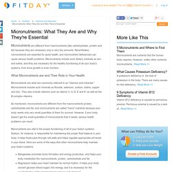Micronutrients: What They Are and Why They're Essential / Nutrition / Vitamins and Minerals