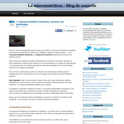 L' hyperperméabilité intestinale, carrefour des pathologies sur La Micronutrition - Blog d'un micronutritionniste