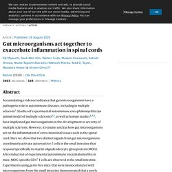Gut microorganisms act together to exacerbate inflammation in spinal cords