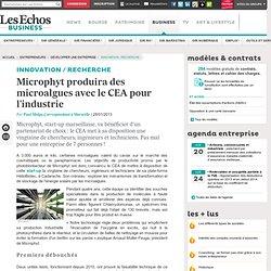 Microphyt produira des microalgues avec le CEA pour l'industrie