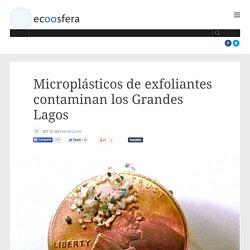 Microplásticos de exfoliantes contaminan los Grandes Lagos