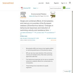 Environmental Pollution Volume 236, May 2018, Single and combined effects of microplastics and mercury on juveniles of the European seabass (Dicentrarchus labrax): Changes in behavioural responses and reduction of swimming velocity and resistance time