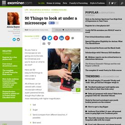 50 Things to look at under a microscope - Mankato Homeschooling