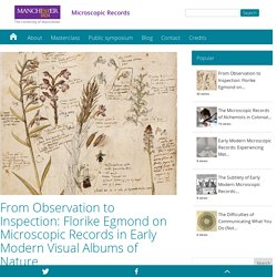 From Observation to Inspection: Florike Egmond on Microscopic Records in Early Modern Visual Albums of Nature - Microscopic Records
