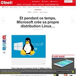 Et pendant ce temps, Microsoft crée sa propre distribution Linux…