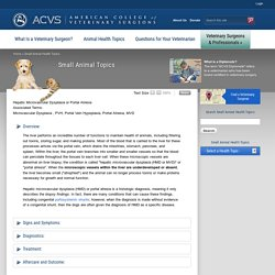 Hepatic Microvascular Dysplasia or Portal Atresia