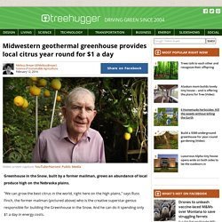 Midwestern geothermal greenhouse provides local citrus year round for $1 a day