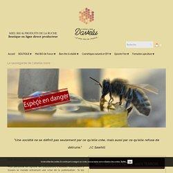 Le miel d'abeille noire : 100% terroir