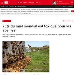 75% du miel mondial est toxique pour les abeilles