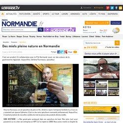 Des miels pleine nature en Normandie