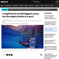 It might be the world's biggest ocean, but the mighty Pacific is in peril
