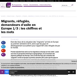 Migrants, réfugiés, demandeurs d'asile en Europe 1/3 : les chiffres et les mots