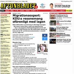 Migrationsexpert: KDU:s resonemang oförenligt med lagen