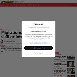 """Migrationsverket: """"Hans skäl är inte tillräckliga"""""""