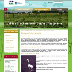 """site natura 2000 """"Vallée de la Charente en amont d'Angoulême"""""""