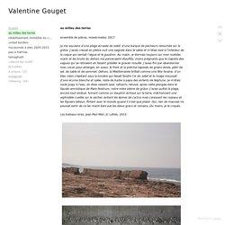 au milieu des terres - Valentine Gouget