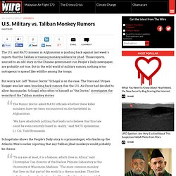 U.S. Military vs. Taliban Monkey Rumors | The Atlantic Wire