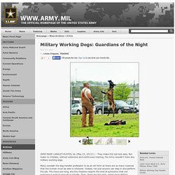 Military Working Dogs: Guardians of the Night
