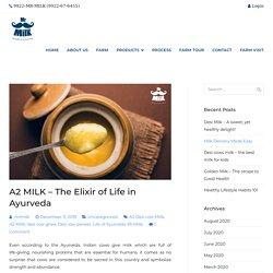A2 MILK – The Elixir of Life in Ayurveda