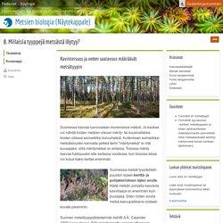 8. Millaisia tyyppejä metsästä löytyy?